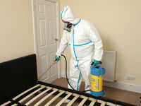 Fumigation-service-spotlisting